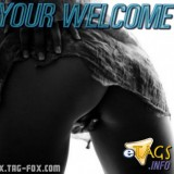 yourwelcomeadultcomment023