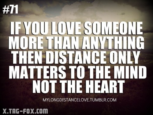 251719-i-love-you-more-than-anything-quotes-more-than-anything-quotes-quotesgram.jpg